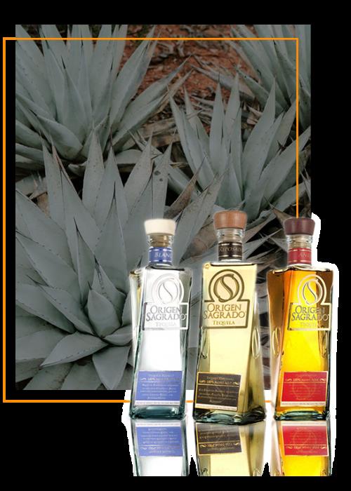 gute mexikanische Tequilas von Origen Sagrado