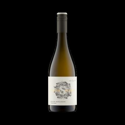 toller grauer Burgunder - weißwein - trocken aus der pfalz