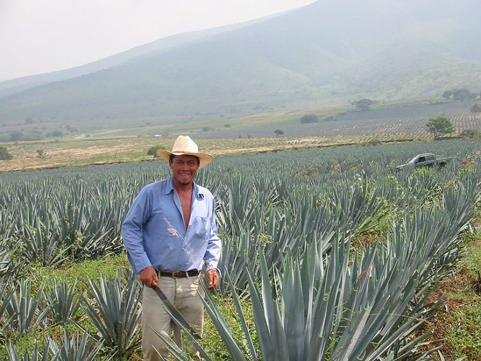 Tequilas del Señor - Eigene Agavenfelder
